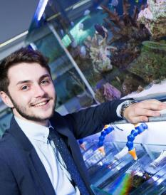 Sam Hamill - The fish entrepreneur