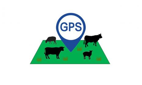 GPS logo in a field of grass and farm animals