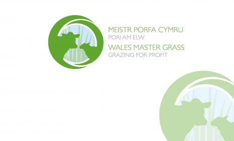 Wales Master Grass (image)