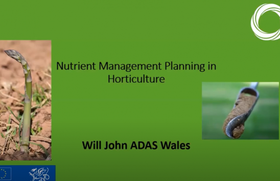 Nutrient management planning in horticulture