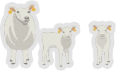 Increase the number of lambs reared from 120% to 140%