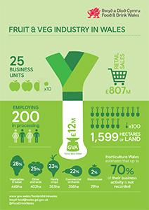 Fruit & Veg infographic