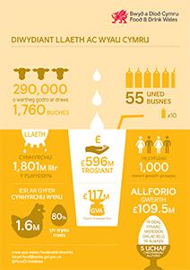Dairy infographic