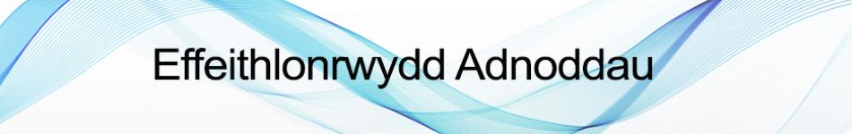 RE 2 Welsh.jpg