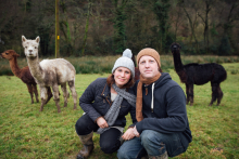 Tynewydd Alpacas.jpg
