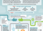 Introduction to Superfast Broadband Infographic