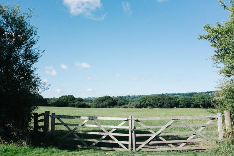 gate and field landscape